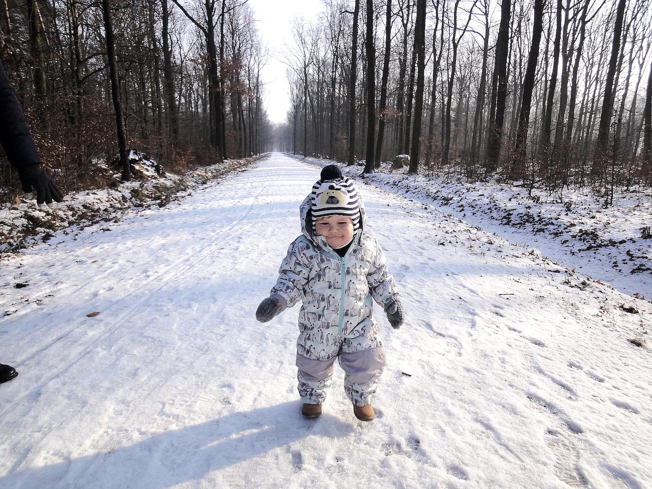 Zioła które bezpiecznie można stosować u niemowląt i małych dzieci